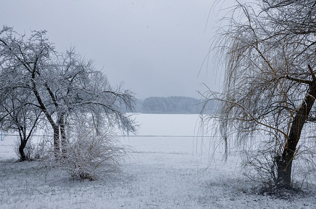 Житомир нарешті потішило сніжною погодою